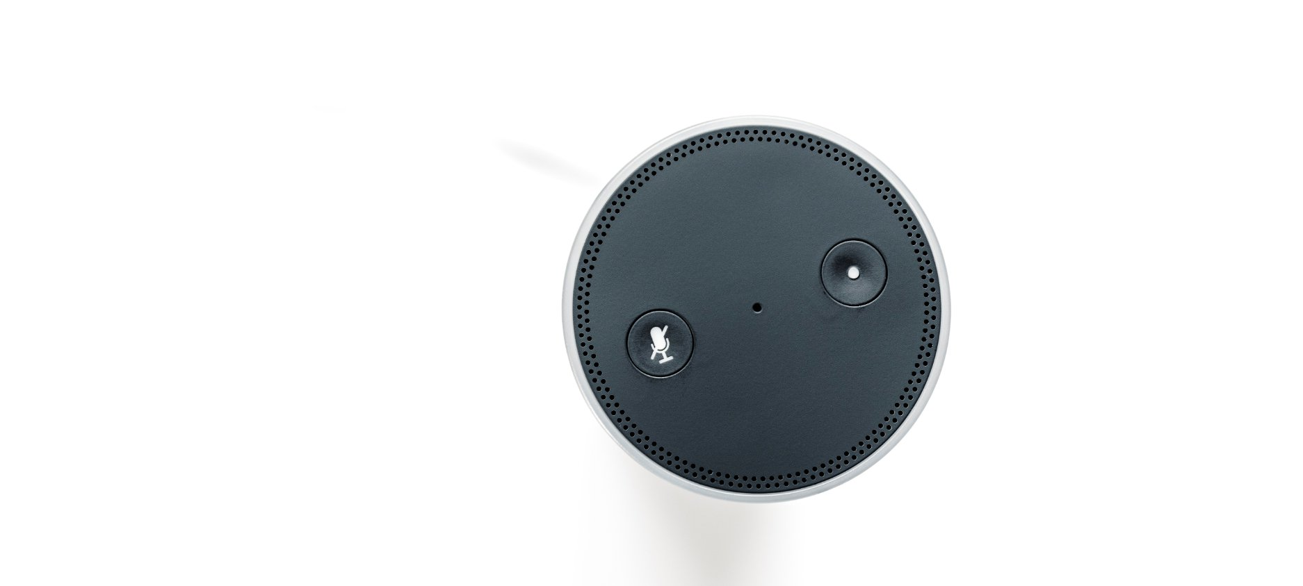 The Rising Popularity of Voice Search